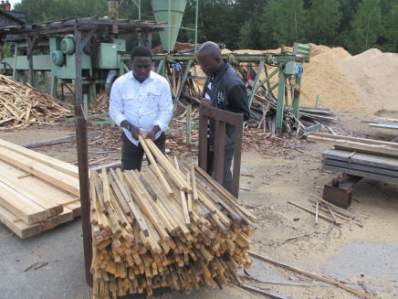 Checking the wood quality at the sawmill plant