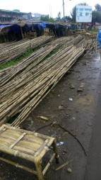 Bamboo for processing (© Amare)