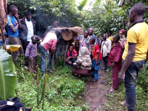 Planting of bee-loving trees