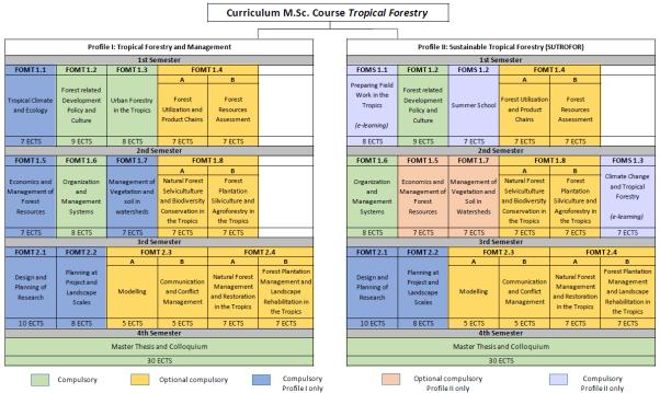 Curriculum new